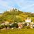 ruins of falkenstein castle in autumn lower austria austria stock photo © phbcz
