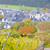 vineyards near pommern rheinland pfalz germany stock photo © phbcz