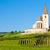 kerk · wijngaard · Frankrijk · gebouw · reizen · architectuur - stockfoto © phbcz