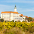 mikulov with autumnal vineyard czech republic stock photo © phbcz