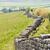 hadrians wall northumberland england stock photo © phbcz