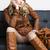 nő · visel · barna · kabát · csizma · ül - stock fotó © phbcz