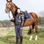 lovas · ló · legelő · nő · nyár · farmer - stock fotó © phbcz