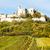 ősz · alsó · Ausztria · növény · szőlő · szőlőskert - stock fotó © phbcz
