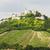 遺跡 · 城 · 畑 · オーストリア · 建物 - ストックフォト © phbcz
