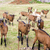 herd of goats, Aveyron, Midi Pyrenees, France stock photo © phbcz