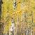 樺 · 路地 · 秋 · 工場 · パス - ストックフォト © phbcz