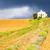 capela · campo · de · lavanda · planalto · França · flor · edifício - foto stock © phbcz