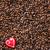 stilleven · koffiebonen · marsepein · hart · voedsel · Rood - stockfoto © phbcz