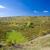República · Checa · paisagem · plantas · cair · agricultura · crescer - foto stock © phbcz