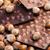 tej · csokoládé · mogyoró · fából · készült · étel · fa - stock fotó © phbcz