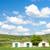 rustiek · wijnkelder · platteland · wijnglazen · flessen · panoramisch - stockfoto © phbcz