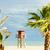 badmeester · cabine · strand · boom · zee · palm - stockfoto © phbcz