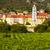 ワイン · オーストリア - ストックフォト © phbcz