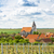 hnanice with spring vineyard czech republic stock photo © phbcz