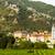 durnstein and vineyard in wachau region lower austria austria stock photo © phbcz