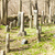 кладбище · Чешская · республика · Европа · серьезную · кладбища · улице - Сток-фото © phbcz
