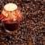 ancora · vita · candela · chicchi · di · caffè · cafe · lampada · oggetto - foto d'archivio © phbcz