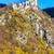 ruins of castle called stary hrad near strecno slovakia stock photo © phbcz