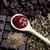 fűszer · csokoládé · csillag · ánizs · fahéj · kávé - stock fotó © phbcz