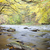metuje river in autumn czech republic stock photo © phbcz