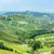 Италия · Европа · винограда · сельского · хозяйства · природного · улице - Сток-фото © phbcz