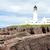Rubha Reidh Lighthouse, Highlands, Scotland stock photo © phbcz