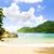 ツリー · 風景 · 海 · 夏 · 手のひら · ヤシの木 - ストックフォト © phbcz