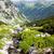 высокий · Словакия · пейзаж · парка · луговой · молчание - Сток-фото © phbcz