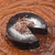 natureza · morta · bolo · de · chocolate · secas · laranja · pergaminho · papel - foto stock © phbcz