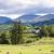 panorama · lake · district · Inghilterra · casa · albero · Europa - foto d'archivio © phbcz