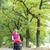 nő · babakocsi · séta · őszi · sikátor · baba - stock fotó © phbcz
