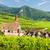 Frankrijk · bloem · huis · dorp · buitenshuis - stockfoto © phbcz