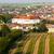 cejkovice with vineyard czech republic stock photo © phbcz