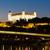 Bratislava · castelo · noite · reflexão · danúbio · rio - foto stock © phbcz