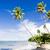 noordelijk · kust · caribbean · boom · landschap · zee - stockfoto © phbcz