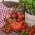 異なる · トマト · オリーブオイル · ボトル · 草 - ストックフォト © philipimage