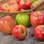 древесины · цвета · различный · природного · домой - Сток-фото © philipimage