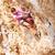 скалолазания · природного · утес · женщину · смотрят - Сток-фото © photobac
