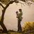 pai · filho · ao · ar · livre · família - foto stock © photobac