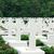 katonaság · temető · portré · kilátás · fehér · keresztek - stock fotó © photocrea