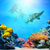 beaucoup · poissons · coloré · nature · mer - photo stock © photocreo