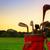 golf · viselet · naplemente · profi · mező · égbolt - stock fotó © photocreo