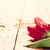 romantische · ochtend · Valentijn · dag · cute · meisje - stockfoto © photocreo