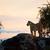 skał · sawanna · wygaśnięcia · safari · serengeti · Tanzania - zdjęcia stock © photocreo