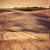 toscana · paisagem · solitário · árvore · Itália - foto stock © photocreo