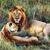 aslan · aile · park · Afrika · grup · hayvan - stok fotoğraf © photocreo