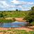 bokor · szavanna · tájkép · nyugat · Kenya · Afrika - stock fotó © photocreo