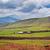 szavanna · tájkép · Tanzánia · Afrika · házak · völgy - stock fotó © photocreo
