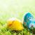 voorjaar · bloemen · boeket · tulpen · kleurrijk · bokeh - stockfoto © photocreo